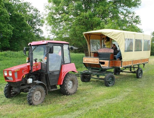 В Беловежской пуще начнут проводить фотосафари на тракторе