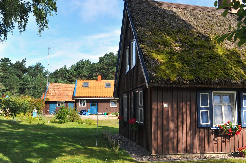 В Беларуси можно будет перевести свои садовые домики в жилые: появился проект нового указа
