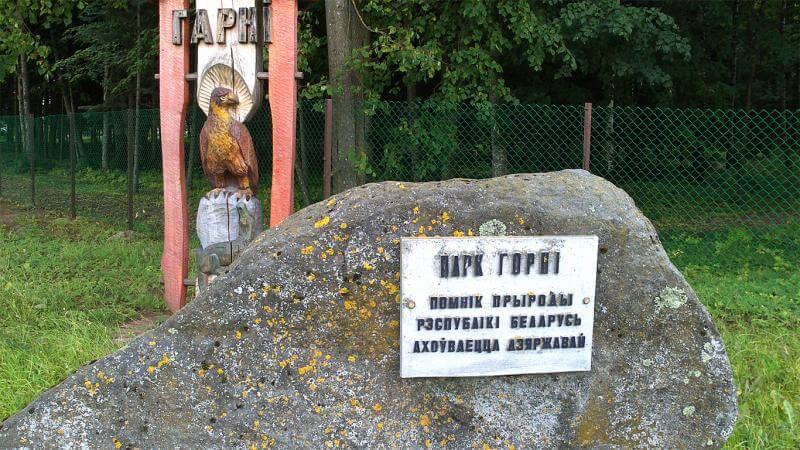 Первый в стране туевый квест появился в Лиде