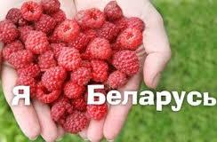 Почему у белорусов не получается создать положительный имидж страны?