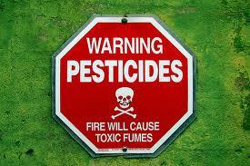 Пестициды из Гродненской области вывезут в Германию