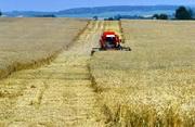АПК Беларуси к 2015 году должен выйти на $8 млрд. экспорта